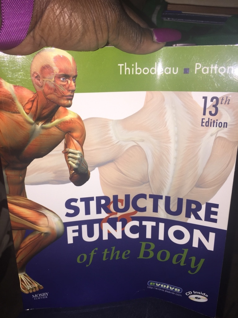 Letgo structure function of the bod in jacksonville fl