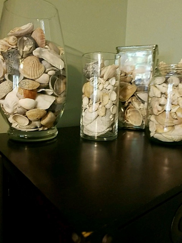 4 glass vases with or without seashells