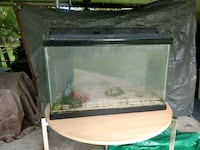 30 gal tank with light and stand Houston, 77037