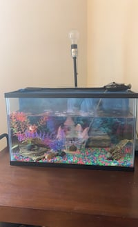 30 gallon fish tank and pump included