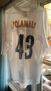 Troy Polamalu NFL Steelers Team Apparel Jersey L