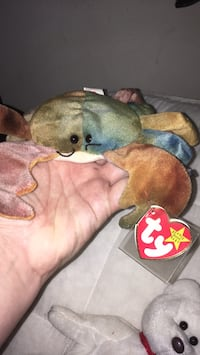 Claude beanie baby in mint condition West Haven, 06516