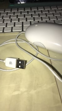 Apple mouse with cable