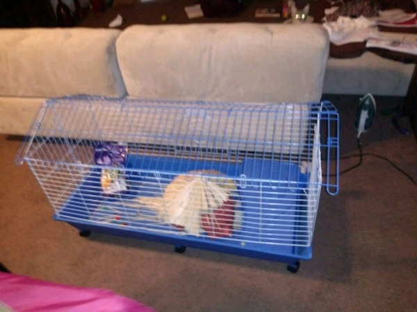 blue and white pet cage