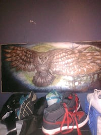 brown owl painting