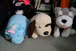 Stuffed animal and pillow pet
