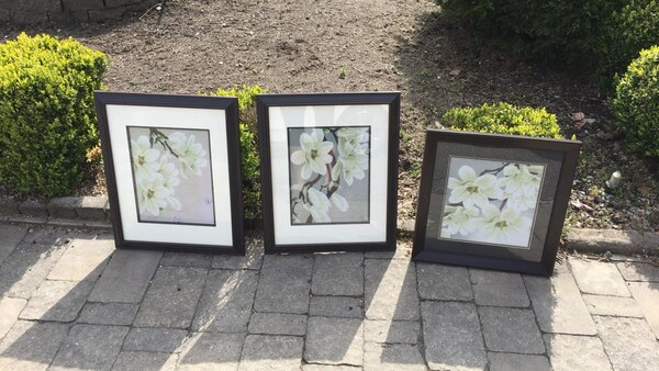 Three  black wooden framed painting of flowers