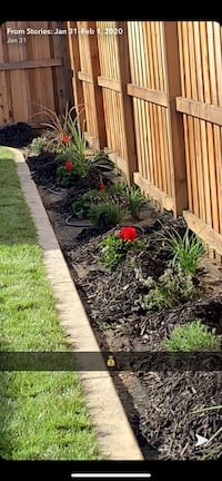 Landscape and maintenance have your yard looking better