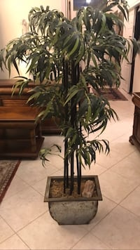 "Silk ""bamboo"" potted plant"