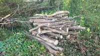 Free dry fire wood firewood logs fireplace log Silver Spring