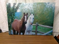 brown and white horse painting Niles, 49120
