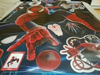 Amazing Spider-Man wall decal Campbell Hall, 10916