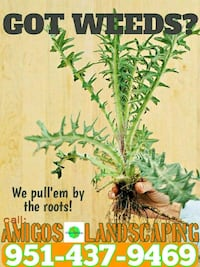 weed abatement and containment  Nuevo