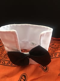 """Collar tie for dog or cat 11"""" width Jessup, 20794"""