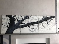 Black and white tree painting (3 pieces from Urban barn) Coquitlam, V3E 3M1