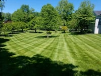 spring cut grass for only $ 45 Clinton