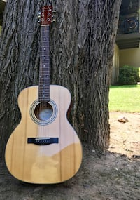Fender looking for a home  2346 mi