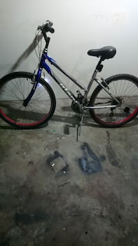 grey and blue Giant mountain bike