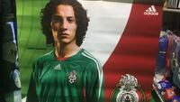 Soccer Mexican national team player Guardado 32x32 Vienna, 22180