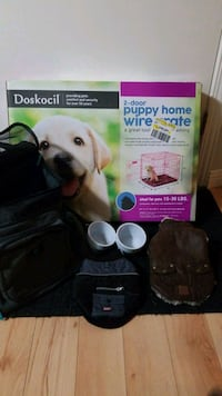 Complete Puppy Package