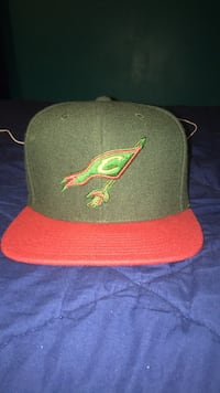 Cleveland cavs hat Wakefield, 02879