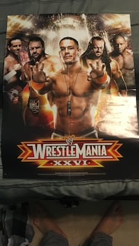 Wrestlemania/hall of fame poster