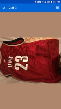 red LeBron James #23 basketball shirt screenshot Blaine, 55449
