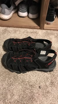 black-and-gray wet shoes