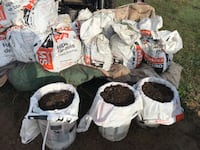 Compost  5 years composted Kawartha Lakes, K0M