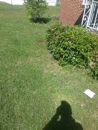 Lawn mowing Claxton, 30417