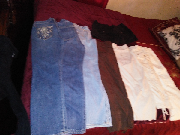 6 pair of size 8 pant and capris and one pair of black shorts Blaine