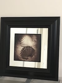 Two white scalloped shells painting with black frame Langley, V2Y 3C6