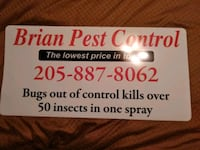 If you have bugs i can get them bed bugs all bugs Birmingham