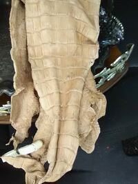Gator skin laid on leather Raceland, 70394