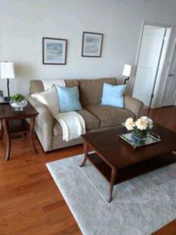 Crate and Barrel Sofa; Color: earth; Fabric:Tussah