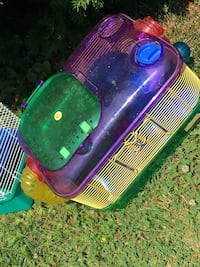 green and purple pet carrier Florence, 41042