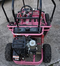 PINK GO CART BY TRAILMASTER. ASKING $800.00  Hagerstown