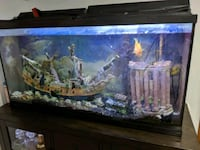 60 gallon fish tank Salt Lake City, 84108