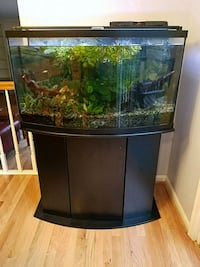 Aquarium - complete system Fairfax Station, 22039