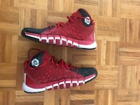 D Rose Basketball shoes size 11 Toronto, M3H 2S9
