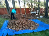Leaf removal clean-up Upper Marlboro