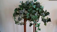 Bountiful Artificial Ivy Plant  Springfield