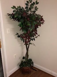 Artificial Plant For Home Decor Ashburn, 20147