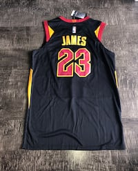 lebron james cleveland caveliers jersey  Miami, 33196