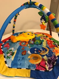 Baby einstein activity gym, play mat, smoke  and pet free home