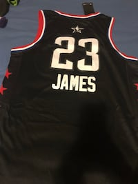 LeBron James All-Star Jersey