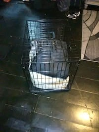 dog crate Derry, 03038