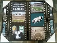 Philadelphia Eagles football field photo Glen Ellyn, 60137