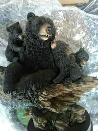 Mama bear with cubs Clearwater, 33760