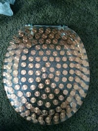 Acrylic toilet seat with pennies